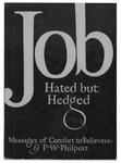 Job : hated but hedged