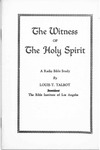 Witness of the Holy Spirit