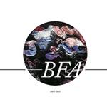 BFA 2014-2015 senior show catalogue